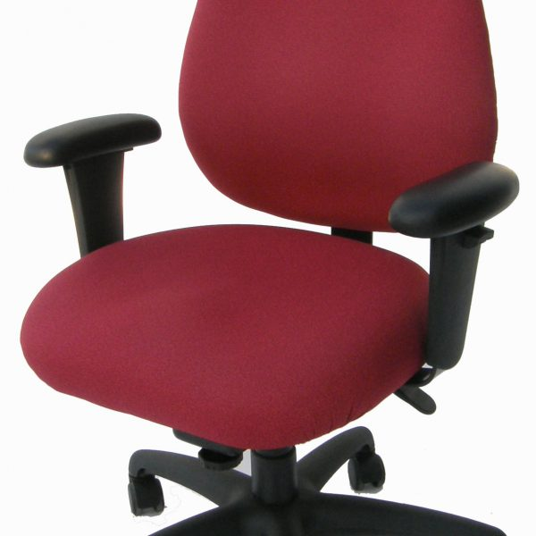 Legends Basic Ergonomic Chair